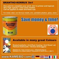 BRANTHO-KORRUX 3in1 RAL 2000 RAL 7035 Kit 1