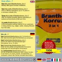 BRANTHO-KORRUX 3in1 Rostschutzlack RAL 9006 Silberaluminium 750 ml