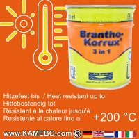 BRANTHO-KORRUX 3in1 Rostschutzlack RAL 2004 Reinorange 750 ml