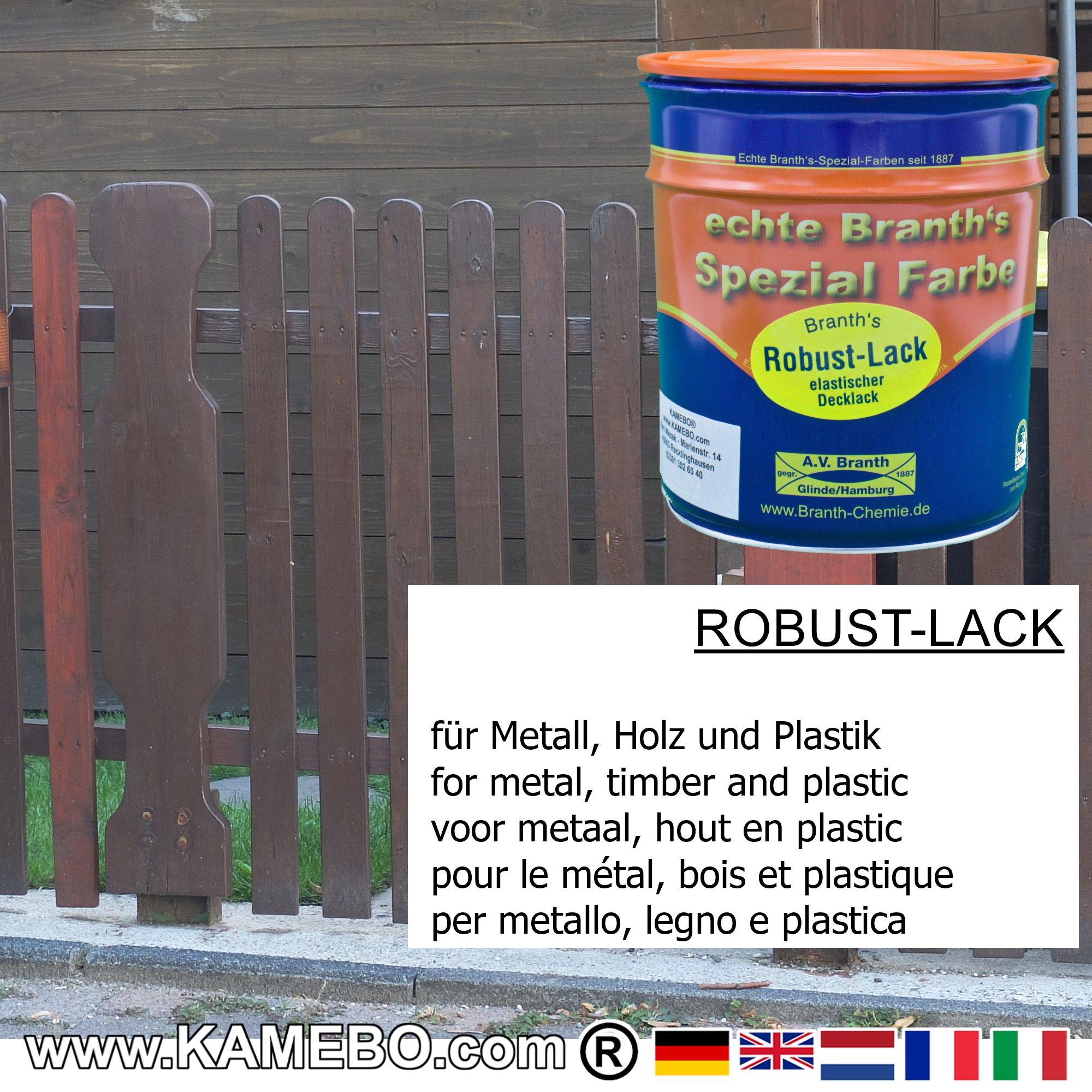 Pittura Resistente Ai Graffi branth's robust lack vernice brillante per metallo ral 8016