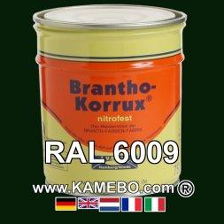 Militärlack Matt RAL 6009 Tannengrün 25 Liter